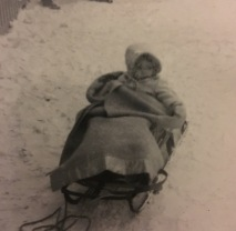 barbara in a sled alaska